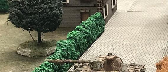 Panthers wait in ambush