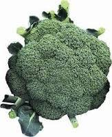 Brócolis Ninja - Unidade