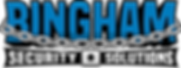 Bingham Security Solutions1 (2).png