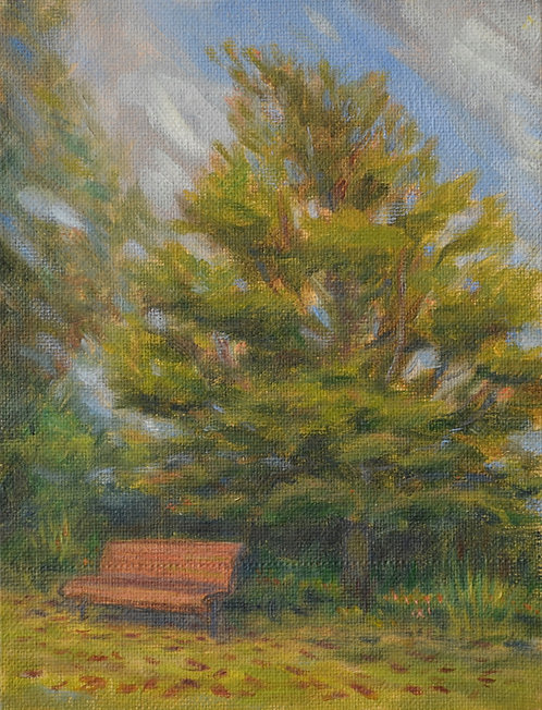 Bench by a tree