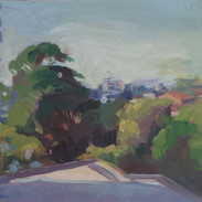 Green amongst suburbia (Sold)