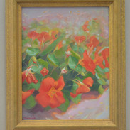 Red nasturtiums (Sold)