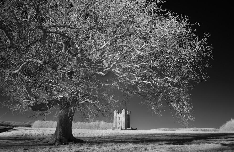 Hiorne Tower, Arundel Park, West Sussex