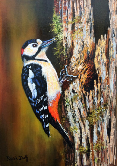 Greater Spotted Woodpecker Oil on canvas