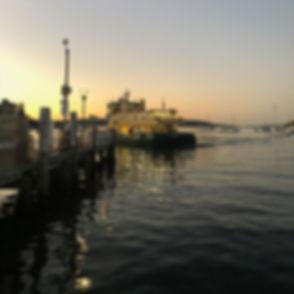 Rose Bay ferry.jpg