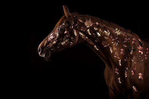 Glamour Horse Leaves