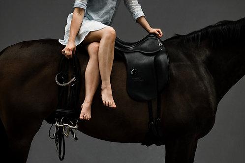 Horses & Fashion
