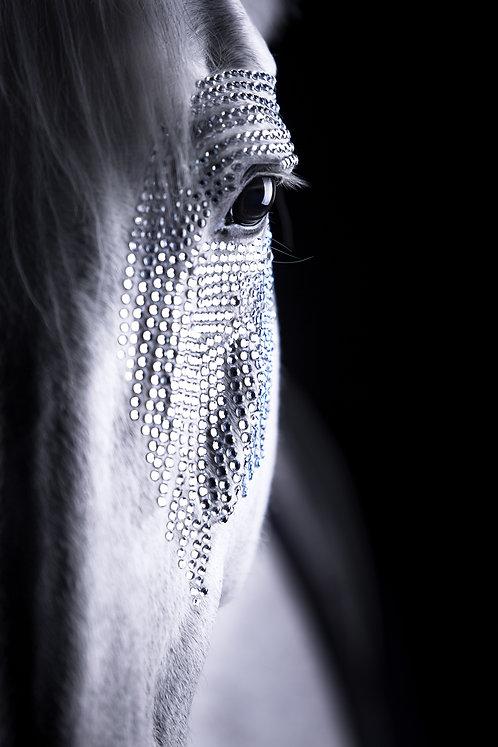 Glamour Horse White Glitters