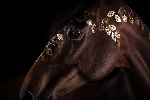 Glamour Horse Small Leaves