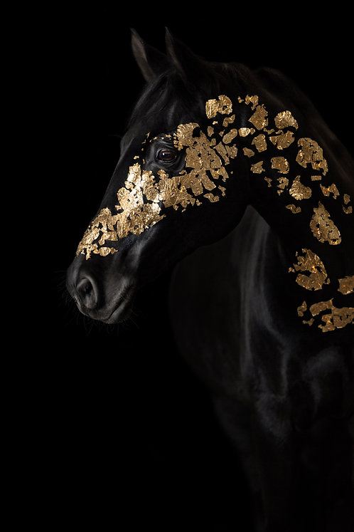 Glamour Horse Gold