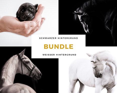 BUNDLE Black & White im Studio