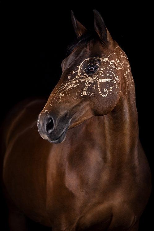Glamour Horse Henna