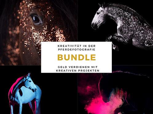 BUNDLE Kreative Pferdefotografie & Mit Projekten Geld verdienen