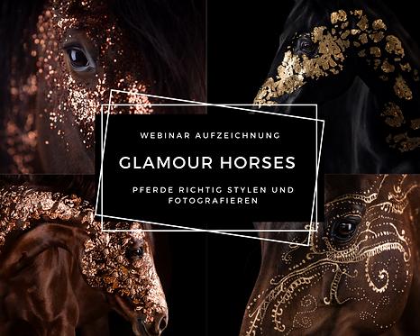 Aufzeichnung : Glamour Horses - Pferde mit Glitzer & Gold richtig stylen