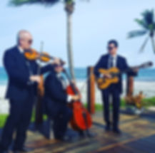 string trio in Miami