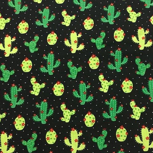 Cactus on Black