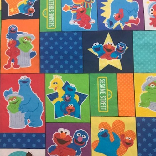 Sesame Street Blocks