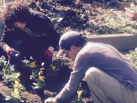 花の苗植え研修