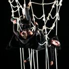 Hrdinky - Cirkus TeTy