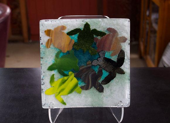 Seven Species Sea Turtle Plate