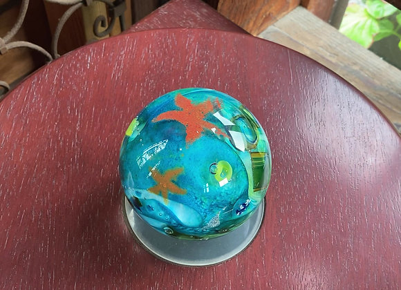 """""""Tidepool"""" Paperweight with Teal Depths"""