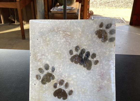 Bobcat Print Plate