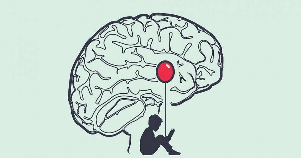 Ubicación de la amígdala