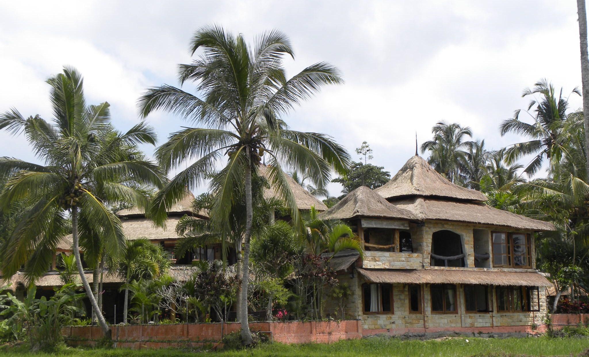 vue-villa-saudara-home-depuis-rizieres