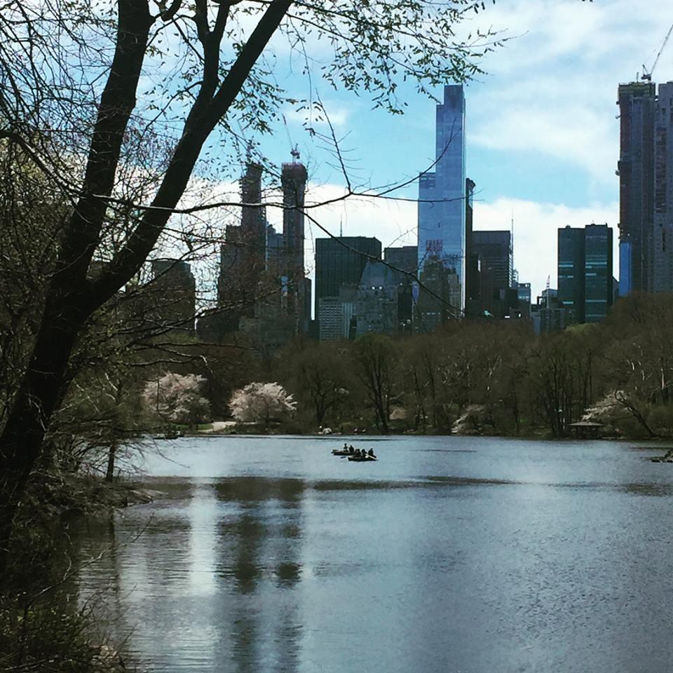 Central park 20 MM à pieds