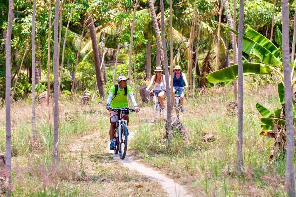 Découverte de Koh Phangan à vélo