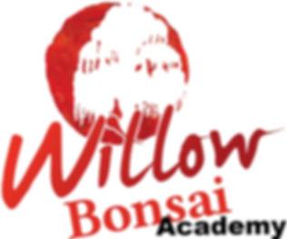 Willow Logo_edited.jpg