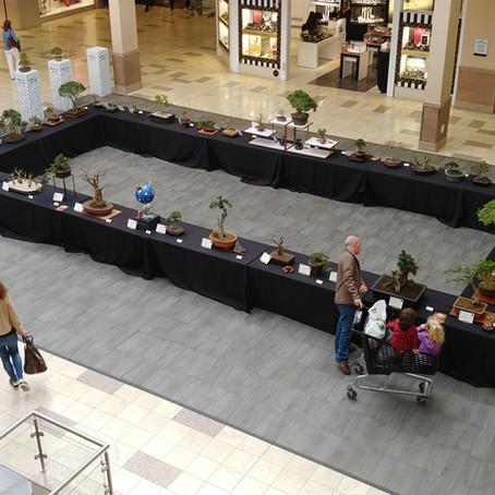 The Brooklyn Mall Bonsai Expo