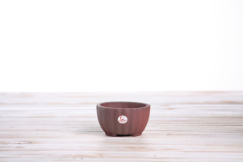 Shell pot Unglazed 8.5 x 5cm