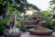 310A6836-Edit.jpg