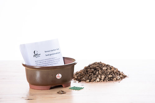 Bonsai Seed Starter Pack