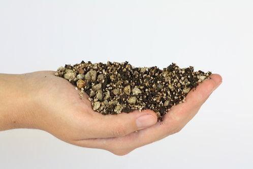 Willow Bonsai soil medium Small 500g