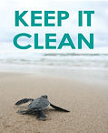 CleanBeach_Turtle_Side1.jpg