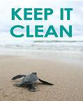 CleanBeach_Turtle_Side1.jpg