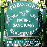 Teddy Roosevelt Sanctuary Sign AS -small