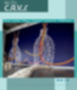 MIT_CAV_FINAL_Page_1.jpg