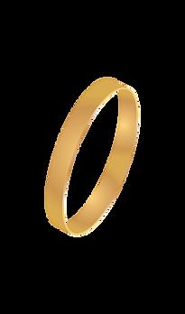 Ring_Diagonal_Final.png