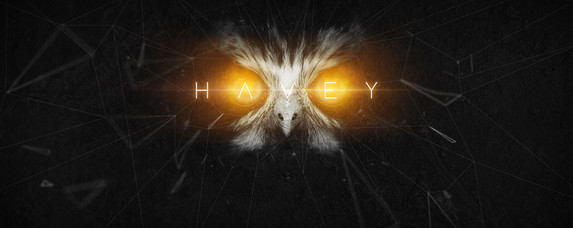 havey_banner.jpg