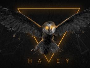 Case Study: Havey Twitch Branding