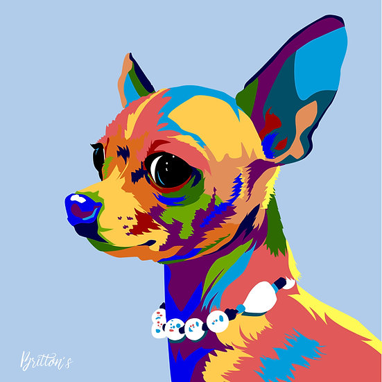 Pet Pixels