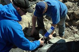 Pond Workshop May 13th 2006 217.jpg
