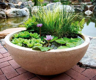 aquascape-container-water-garden-800x800