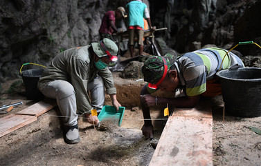 DT_excavates.jpg