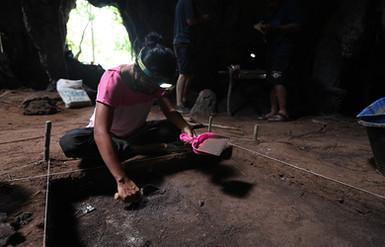 EN_excavates.jpg