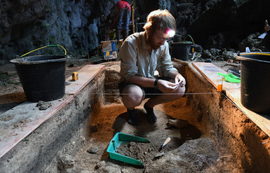 DG_excavates.jpg