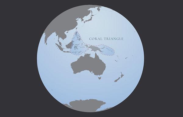 Coral_triangle.jpg